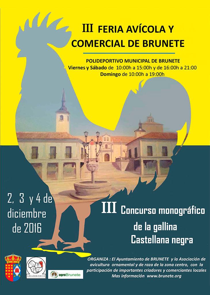 Cartel expo Brunete 2016