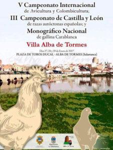 V Campeonato Internacional Villa Alba de Tormes @ Plaza de Toros Ducal - Alba de Tormes | Alba de Tormes | Castilla y León | España