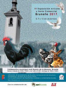 IV Exposición Avícola y Feria Comercial Brunete 2017 @ Polideportivo Municipal José Ramón de la Morena, Brunete | Brunete | Comunidad de Madrid | España