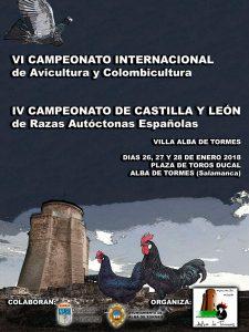 VI Campeonato Internacional de Avicultura y Colombicultura Villa Alba de Tormes @ Plaza de Toros Ducal | Alba de Tormes | Castilla y León | España