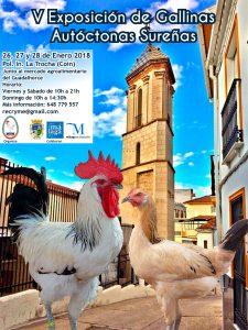 V Exposición de Gallinas Autóctonas Sureñas @ Pol. Ind. La Trocha (Coín) | Coín | España