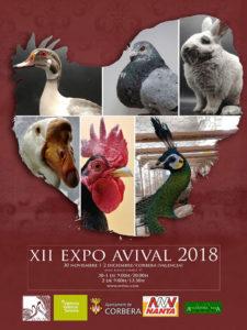 XII Expo AVIVAL 2018 @ Corbera | Comunidad Valenciana | España