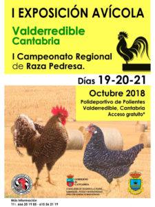 I Exposición Avícola Valderredible (Cantabria) @ Polideportivo de Polientes Valderredible, Cantabria