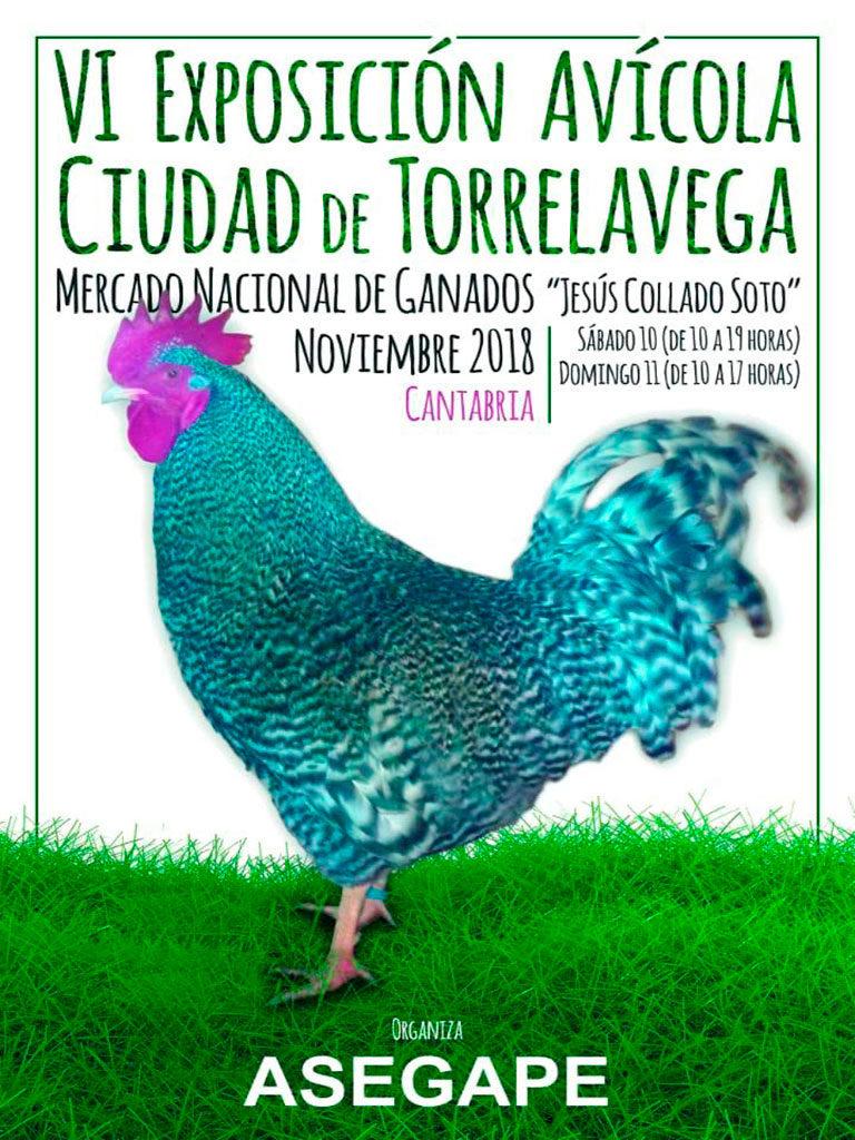 torrelavega-2018