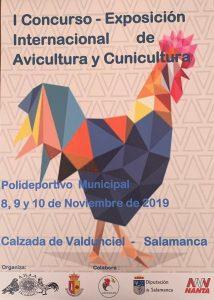 I Concurso - Exposición Internacional de Avicultura y Cunicultura 2019 @ Polideportivo Municipal de Calzada de Valdunciel (Salamanca) | Medina-Sidonia | Andalucía | España