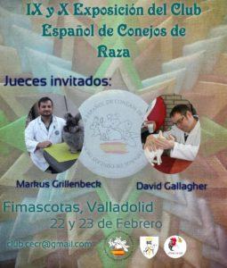 IX y X Exposición del Club Español de Conejos de Raza @ Fimascotas, Valladolid
